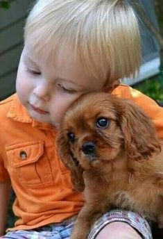 Cavalier King Charles Spaniel with adorable little guy. Dogs And Kids, Animals For Kids, Animals And Pets, Baby Animals, Cute Animals, Cavalier King Charles, Charles Spaniel, Love My Dog, Puppy Love