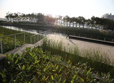 Gallery of Shanghai Houtan Park / Turenscape - 13