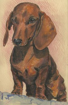 """Check out our internet site for even more relevant information on """"dachshund pups"""". It is actually an exceptional area to learn more. Basset Dachshund, Dachshund Funny, Arte Dachshund, Dachshund Love, Daschund, Psy Art, Weenie Dogs, Scottish Terrier, Wall Colors"""
