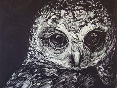 Owl by Anita Luperini Pinned by www.myowlbarn.com