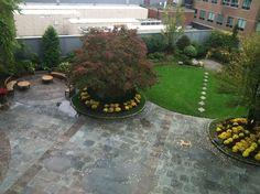 courtyard | Yelp