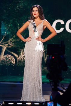 Paulina Vega in evening gown. Representing Colombia she was crowned Miss Universe 2014 Pageant Tips, Pageant Dresses, Pageant Pictures, Pageant Photography, Silver Evening Gowns, Miss Universe 2014, Pageant Crowns, Gown Photos, Camila