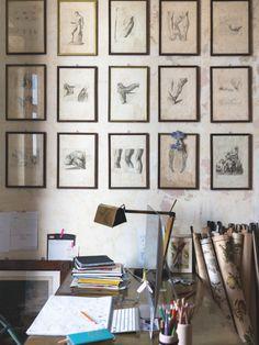 Cabinet de curiosités à Milan | MilK