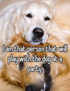 That Will Be Me quotes party animals dogs dog animal funny quote funny quotes playful