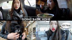 영국 가는날 🇬🇧 Going back home!