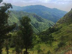 Wundervolle Naturkulisse auf Sri Lanka  #srilanka #nature #safari #srilankan #reise #travel #traveling #reiseblog #junglelife