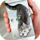 """Download Cat Walks in Phone Cute Joke Apk  V2.0:   I like this app but the cat  is not cute      Here we provide Cat Walks in Phone Cute Joke V 2.0 for Android 2.3.2++ After installing our free application """"Cat walks in phone"""" you will be able to add virtual cat to your phone. This application will display very realistic animation of...  #Apps #androidgame #JUST4FUN  #Entertainment https://apkbot.com/apps/cat-walks-in-phone-cute-joke-apk-v2-0.html"""
