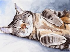 Watercolor Cat, Watercolor Animals, Watercolor Paintings, Watercolors, Gato Animal, Cat Drawing, Animal Paintings, Indian Paintings, Art Paintings