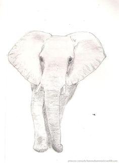 elephant art  more art here