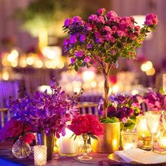 ~ Topiary Centerpieces ~ Style: Garden Love ;  Item: Centerpieces ;  Palatte: Brights & Dark Pink, Dark Purple  Recipe: Fuchsia, Jewel  Mini magenta azalea topiaries and smaller arrangements of peonies and cabbage roses topped reception tables.