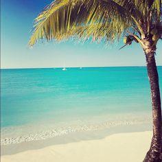 Tropical Dream: Mauritius BelAfrique - Your Personal Travel Planner www.belafrique.co.za