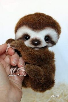 Make one special photo charms for your pets, compatible with your Pandora bracelets. Baby Sloth By Ljudmila Donodina - I am very glad to introduce to you Baby Sloth. Cute Little Animals, Cute Funny Animals, Adorable Baby Animals, Tier Fotos, Cute Animal Pictures, Cute Creatures, My Animal, Animal Babies, Pet Birds