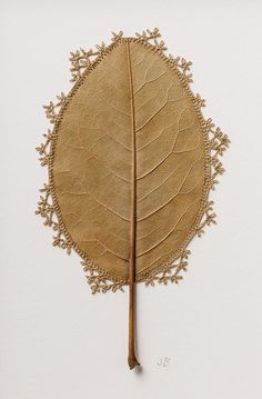 """culturenlifestyle: """"Delicate Crochet Leave Sculptures by Susanna Bauer Susanna Bauer is an artist who works with the embroidery technique of crocheting on fragile dry magnolia leaves. Crochet Leaf Patterns, Crochet Leaves, Art Au Crochet, Crochet Blogs, Crochet Flower, Free Crochet, Magnolia Leaves, Colossal Art, Leaf Art"""