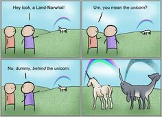 narwhals cooler than unicorns since 1529
