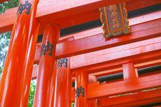 Travel Diary: Fushimi Inari Taisha - Camille Tries to Blog Fushimi Inari Taisha, Japan Travel, Kyoto, Neon Signs, Blog, Blogging