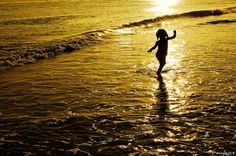 Summer Story | Flickr - Photo Sharing!    (via http://www.flickr.com/photos/rayhue/2731200477/ )