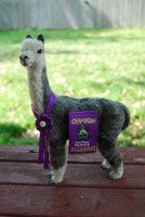 Felted Alpaca Socosani with banner by ~HRUdesign on deviantART