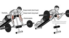 An auxiliary upper-arm isolation exercise, the prone incline barbell curl (aka barbell spider curl) targets your brachialis, not your biceps brachii. Big Biceps, Biceps And Triceps, Biceps Workout, Gym Workouts, Forearm Workout At Home, Barbell Curl, Muscle Fitness, Gain Muscle, Fitness Diet
