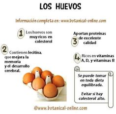 Huevos beneficios y trastornos para la salud