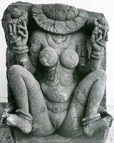 Yoni (Sanskrit: योनि yoni) is the Sanskrit word for the vagina. Its counterpart is the lingam, interpreted by some as the phallus. It is also the divine passage, womb or sacred temple (cf. lila). The word covers a range of meanings, including: place of birth, source, origin, spring, fountain, place of rest, repository, receptacle, seat, abode, home, lair, nest, stable.