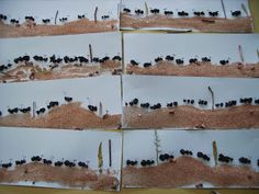 How do ants know where to go? How do other types of animals communicate? Is there anything that we can learn from them? Ant Crafts, Insect Crafts, Insect Art, Preschool Activities, Animal Crafts For Kids, Toddler Crafts, Art For Kids, Ant Art, Irene
