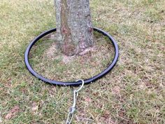 The HOOP Metal Dog Tie Out presented by Monqui Business, LLC - dog kennel cover Dog Yard, Dog Fence, Positive Dog Training, Training Your Dog, Metal Dog Kennel, Dog Runs, Dog Behavior, Dog Houses, Dog Supplies