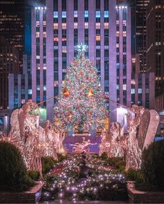 The annual celebration and beauty of Christmas at Rockefeller Center - NYC, NY. Christmas Countdown, Merry Christmas, Christmas Travel, Christmas Love, Christmas Lights, Christmas Ideas, Xmas, Christmas Yard, Christmas Images