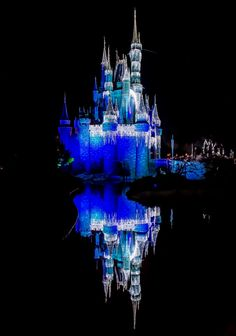 Reflections of a Christmas Castle ~ Joanie Eddis-Koch  Click the link below to rate this photo!