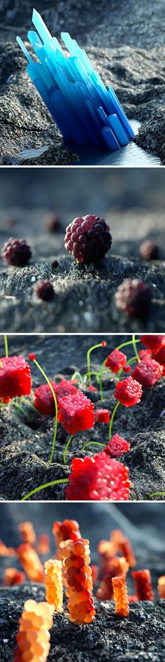 An Alien Planet of Candy-like Rocks and Plants by David Brodeur