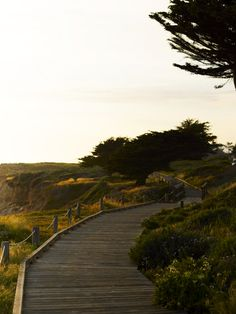 Enjoy a stroll on the 2 mile stretch of Moonstone Beach Boardwalk in Cambria, CA. There are also beach access points and tide pools to explore off the boardwalk. Cambria Hotels, Moonstone Beach, Beauty First, Beach Boardwalk, Tide Pools, Trinidad, West Coast, Places Ive Been, Wedding Planning
