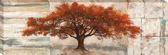 Rubra by Leonardo Bacci Photographic Print on Wrapped Canvas
