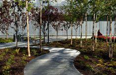 The Anchorage Museum bi atelier ps landscape architecture 10 photo by ken graham