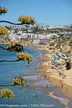 Praia dos Alemães - Portugal by Portuguese_eyes, via Flickr Famous Places, Spain And Portugal, Algarve, Portuguese, Landscapes, Country, Beach, Pictures, Outdoor