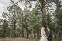 awesome Big Bear Cabin Wedding: Danyel + David