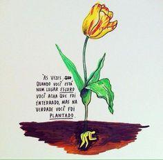 As vezes só nos resta esperar. tudo passa, e nada ocorre por acaso, de tudo pode-se tirar proveito. Bible Quotes, Me Quotes, Funny Quotes, Random Quotes, God Is Good, Life Is Good, Hillsong United, Owl Always Love You, Set Me Free