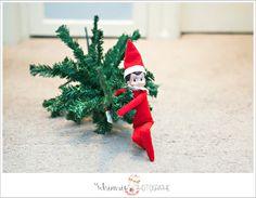 Elf on the Shelf brings kids a present of a little christmas tree Santa tree skirt