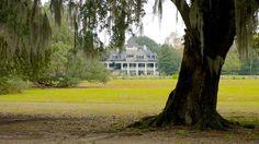 Magnolia Plantation and Gardens in Charleston, South Carolina | Expedia-house tour and 14 mi of pathways