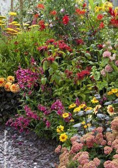 Paul Wolf Tuindecoraties maakt mooie kleurrijke border vol bloemen. De droom van elke tuinliefhebber ongetwijfeld.