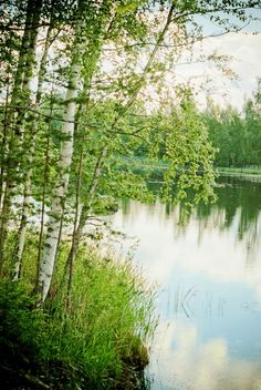 Hirvensalmi-7 In the Southern Savonia region of Finland, Hirvensalmi is often said to be an island municipality. With 127 lakes, 327 islands, the municipality is 37% water & an area of outstanding natural beauty.....