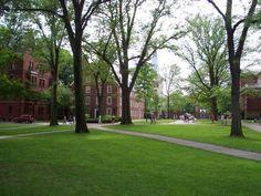 Harvard grounds - Google Search
