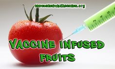 Vaccine Infused Foods Edible Vaccines: What's in your Banana?