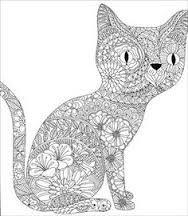 Resultado de imagen de hidden nature coloring book