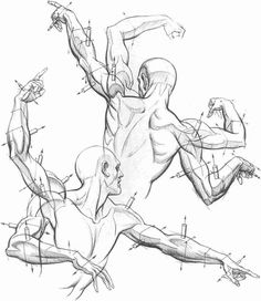 Enjoy a collection of references for Character Design: Arms Anatomy. The collection contains illustrations, sketches, model sheets and tutorials… This gall Human Figure Drawing, Figure Drawing Reference, Body Drawing, Anatomy Reference, Life Drawing, Drawing Faces, Arm Drawing, Figure Drawings, Body Anatomy