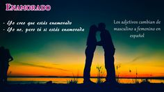 In love: I think you are in love – I am not, but you are. Spanish adjectives change from masculine to feminine.