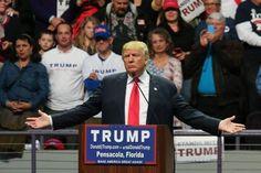 Trump Rallies #DonaldTrumpTalkingDoll