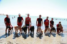 Bidog Beach, a beach for our four-legged friends with series of events to entertain your dog. Here the photos of the first event of the summer season dedicated to dogs. Trainer, the sponsor, gave away gadgets and food, the animation team created a super dog-owner walk and last but not least a rescue dog demonstration made by SICS – Italian School of Rescue Dogs! Fantastic!