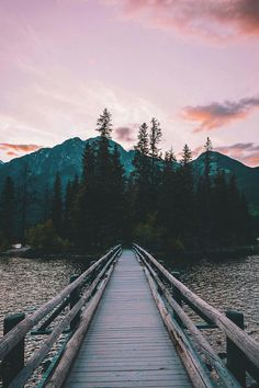 bridge, forest, and landscape image