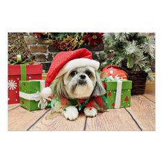 Christmas - Shih Tzu - Gizmo Posters