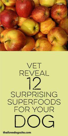 Vet Reveals 12 Surprising Superfoods For Your Dog: apples, bananas, brocolli, eggs, sardines, sweet potato, pumpkin puree, local raw honey, carrots, quinoa.