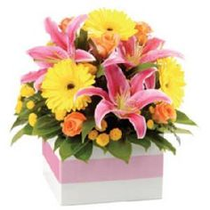 Funky - Amazing Birthday Presents Forever Bright and brimming with choice seasonal flowers, Funky is the ultimate surprise! An abundance of blooms and lush foliage - ideal for 'Congratulations', 'Happy Birthday' or 'Just Because'
